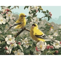 Gold Finches Paint-By-Numbers Art Kit