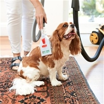Pet Grooming Vacuum Attachment