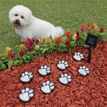 Paw Print Solar Lights